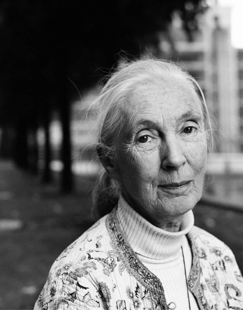 Dr. Jane Goodall, Primatologin