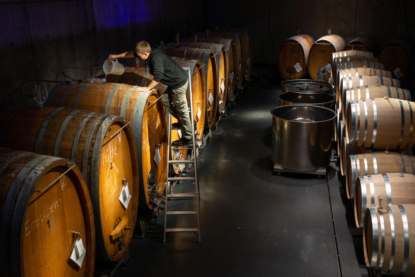 Christian Häuber, Weinbautechniker