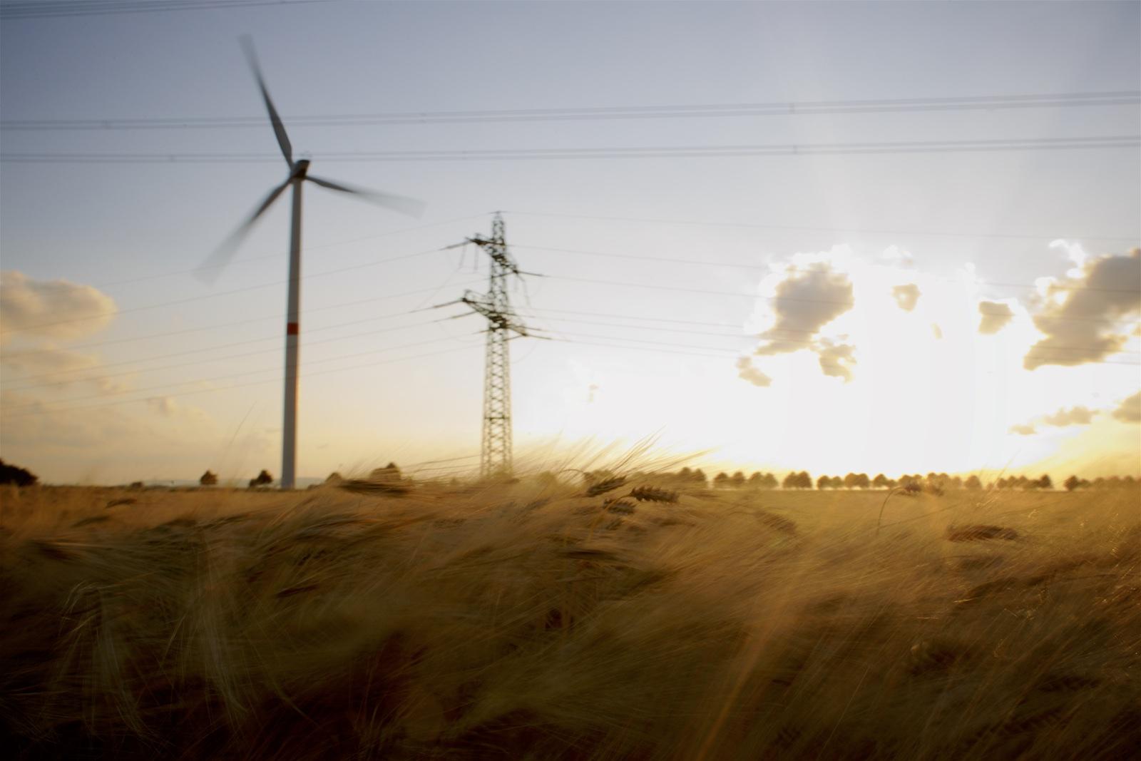 Mensch-Energie-Umwelt_Muehlhaus_Sammlung_028