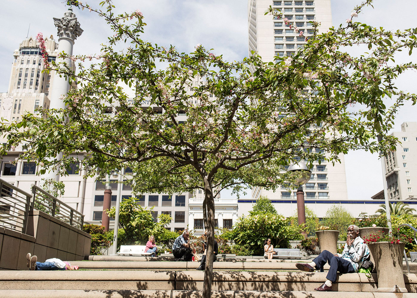 San Francisco, CA, USA. People relaxing under a tree at Union Square.
