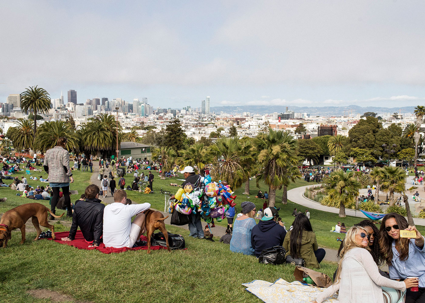 San Francisco, CA, USA. People relaxing at Mission Dolores park.