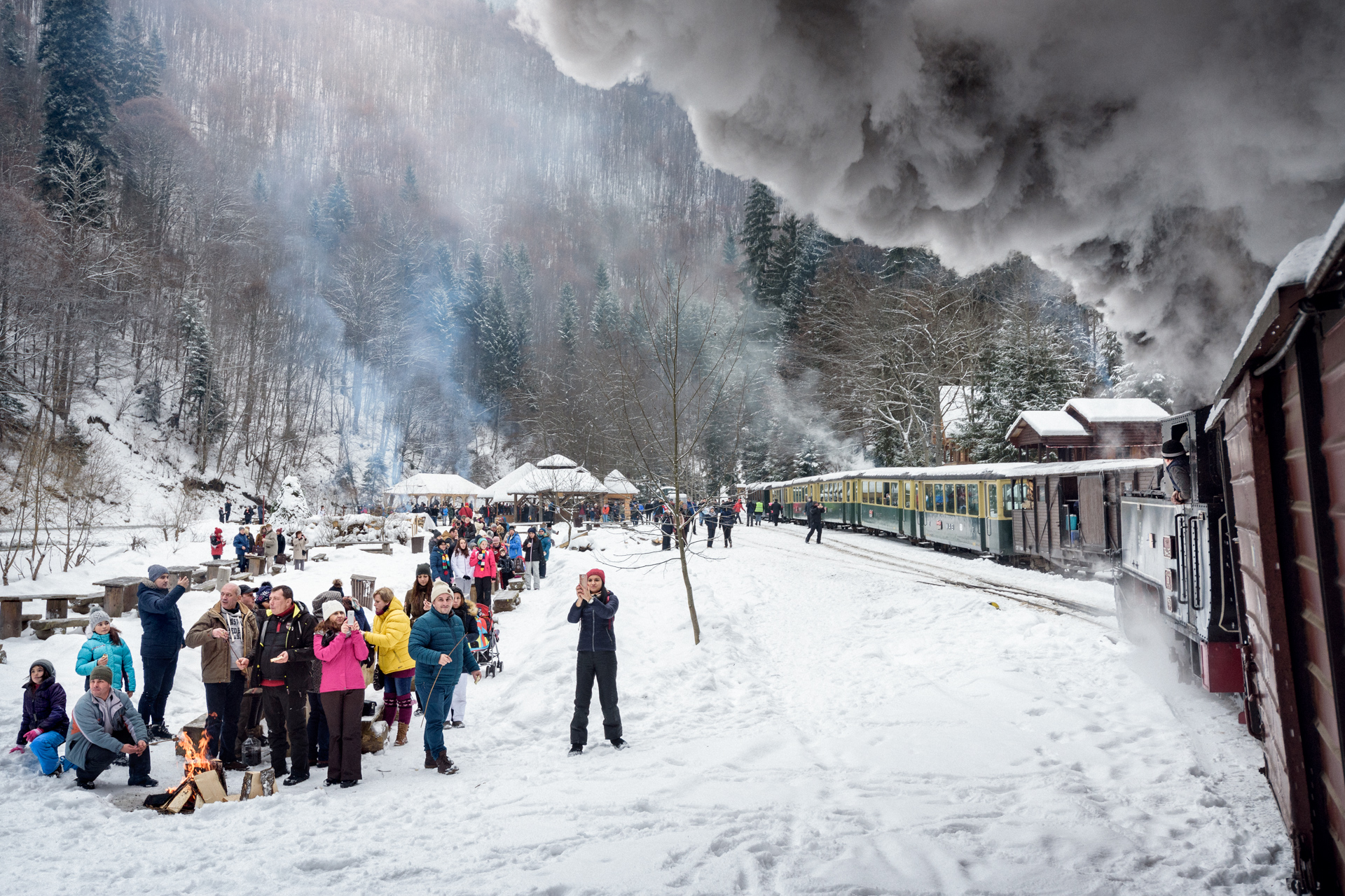 Jörg_Müller_Carpathian-forest-steam-train